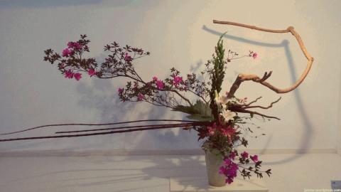 18o_Festival_Japao_2015_032
